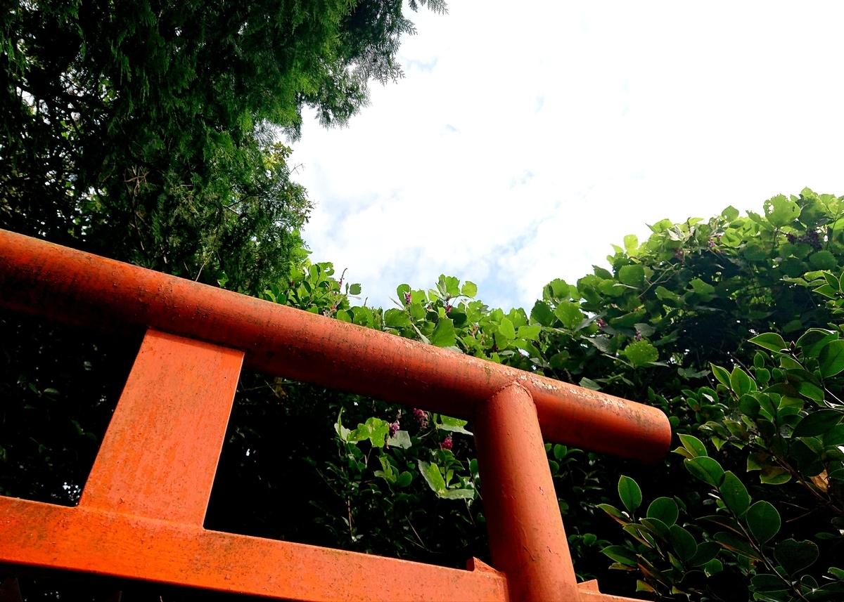 f:id:Kaimotu_Hatuji:20210905123302j:plain