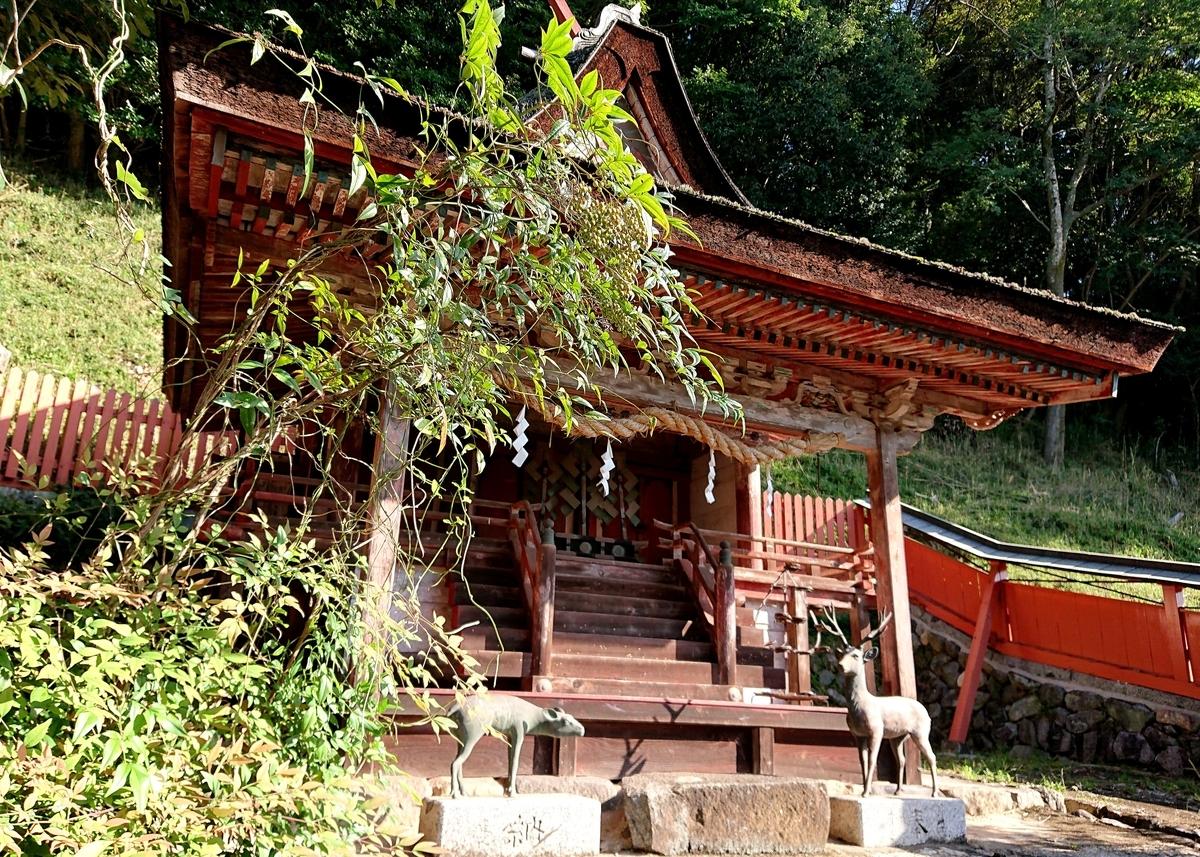 f:id:Kaimotu_Hatuji:20211003154622j:plain