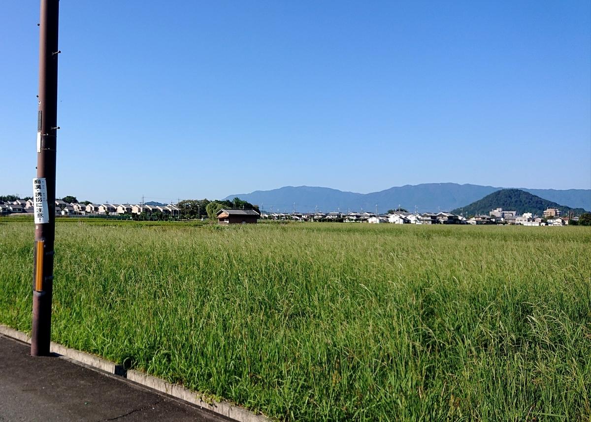 f:id:Kaimotu_Hatuji:20211007065313j:plain
