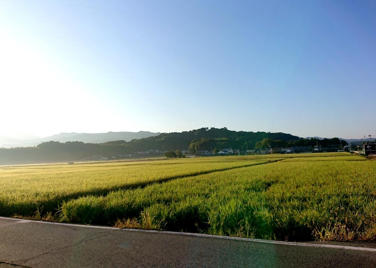 f:id:Kaimotu_Hatuji:20211007065349j:plain