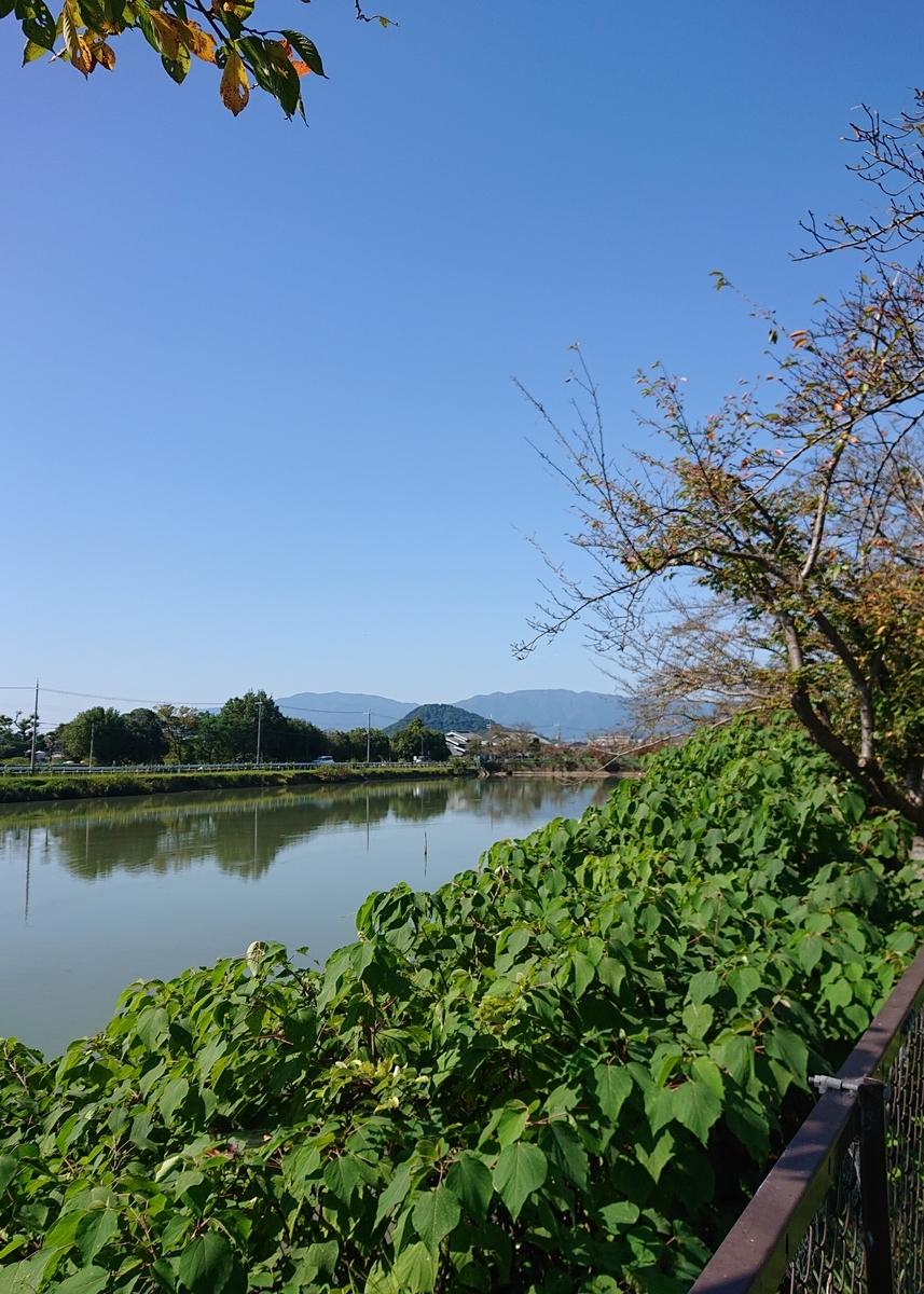 f:id:Kaimotu_Hatuji:20211008115631j:plain