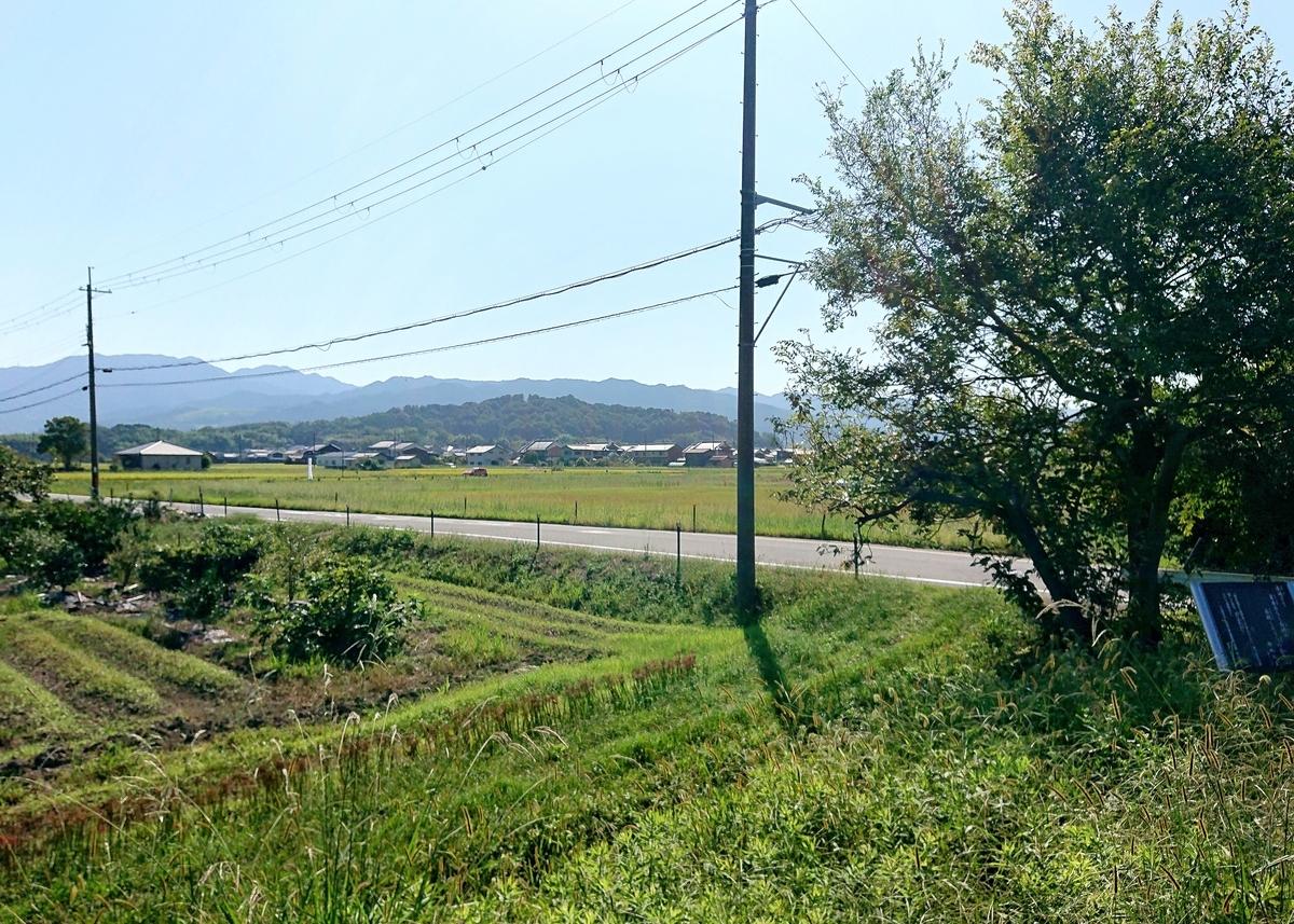 f:id:Kaimotu_Hatuji:20211011100508j:plain