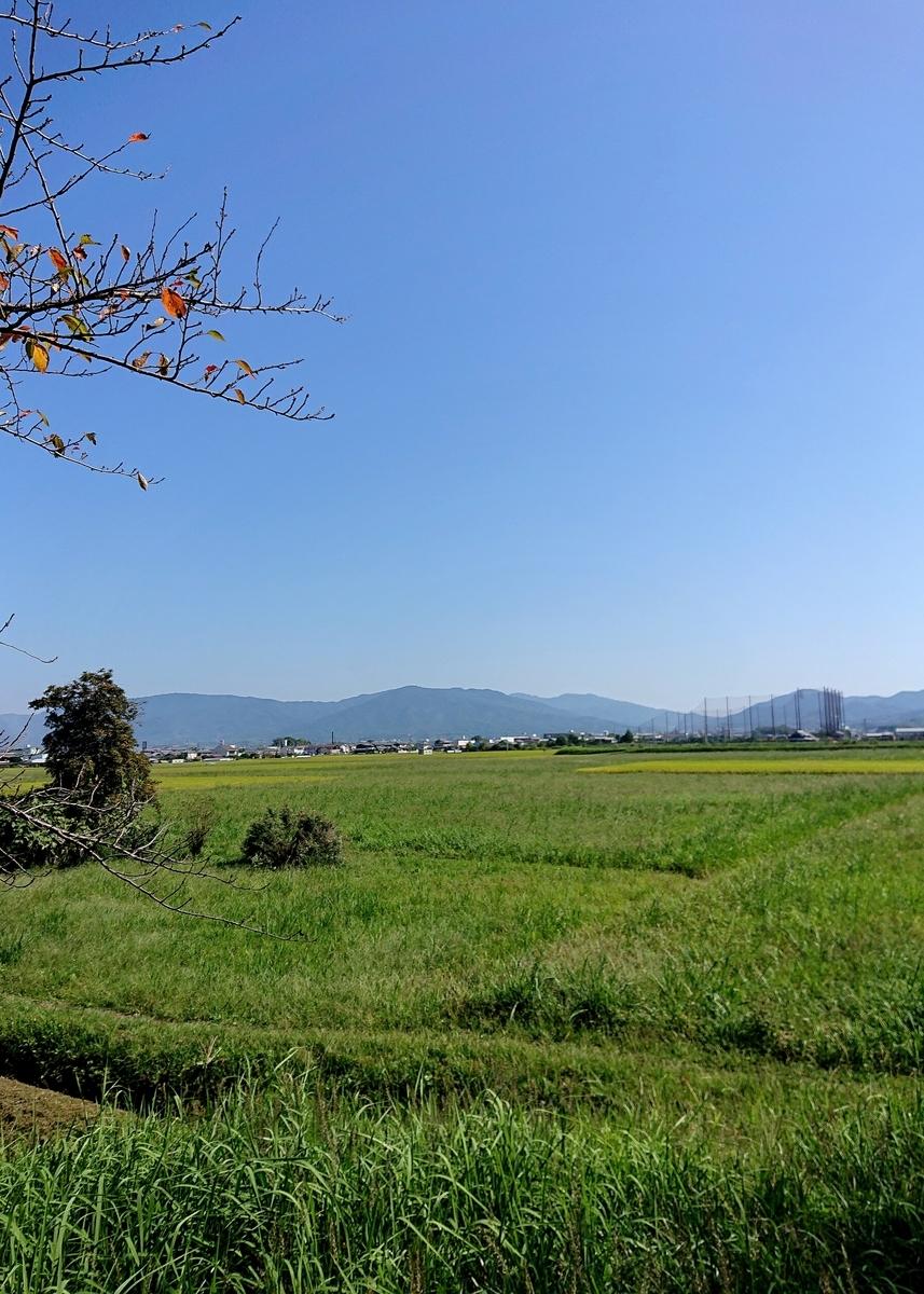 f:id:Kaimotu_Hatuji:20211012132120j:plain