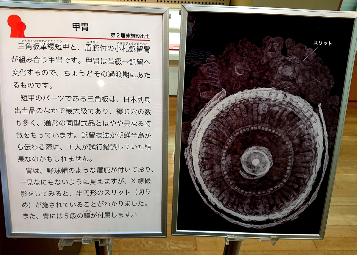 f:id:Kaimotu_Hatuji:20211012135858j:plain
