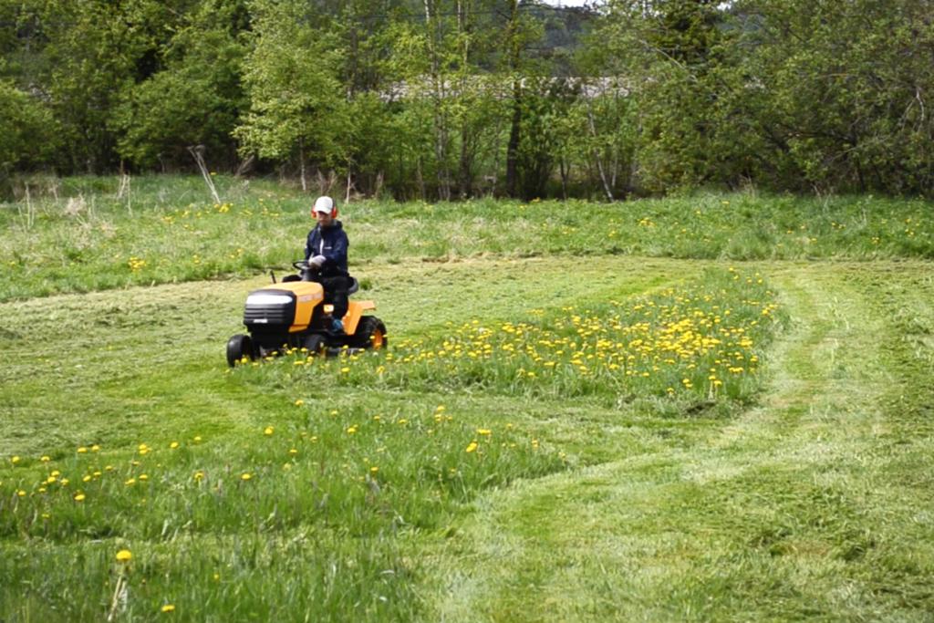 乗用の草刈り機で草刈りをする