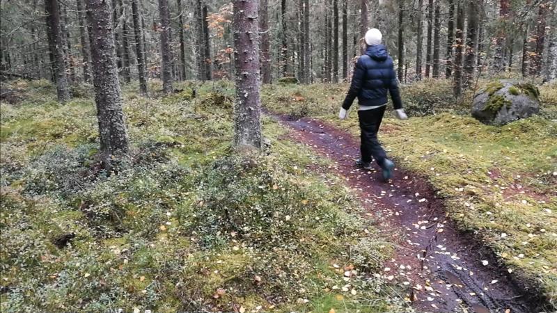 ラーヴまでの森の中の道のり