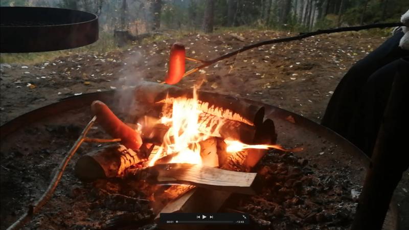 焚き火でソーセージを焼くためのスティック