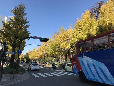 f:id:Kamakura-An:20181127212449j:plain