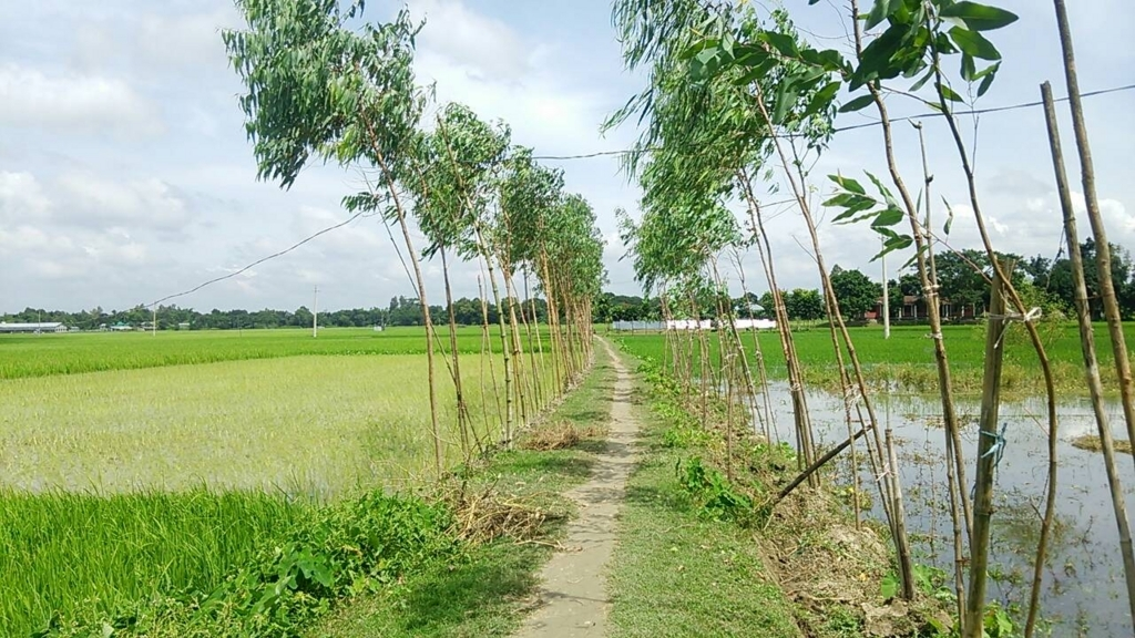 バングラデシュ 治安