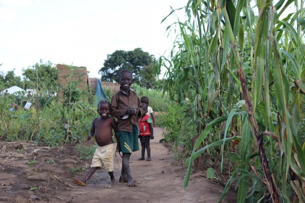 アフリカ 一人旅 おすすめ