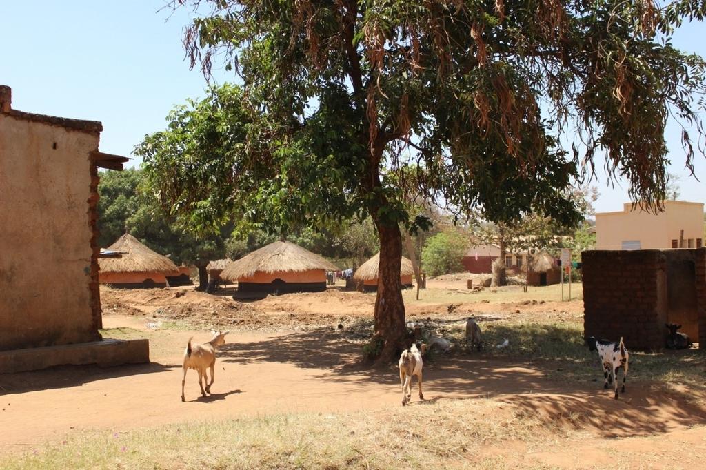 アフリカ 停電