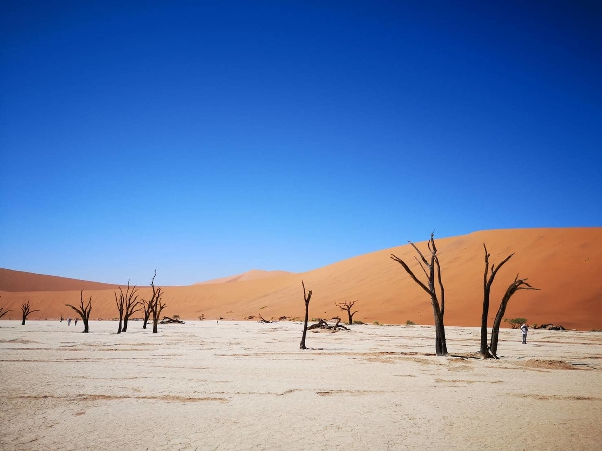 ナミビア 治安