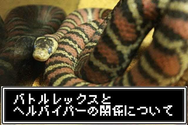 f:id:Katsuox:20210102201035j:plain