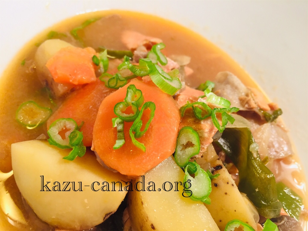 salmon-soup
