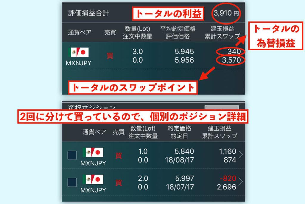 f:id:KazukiTanoue:20181013210744j:plain