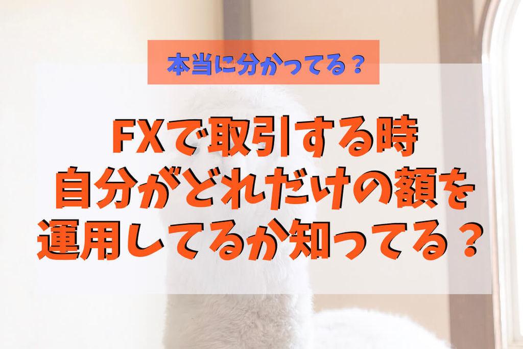 f:id:KazukiTanoue:20181023210133j:plain