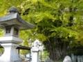f:id:Kazumiiru:20141108191623j:image:medium