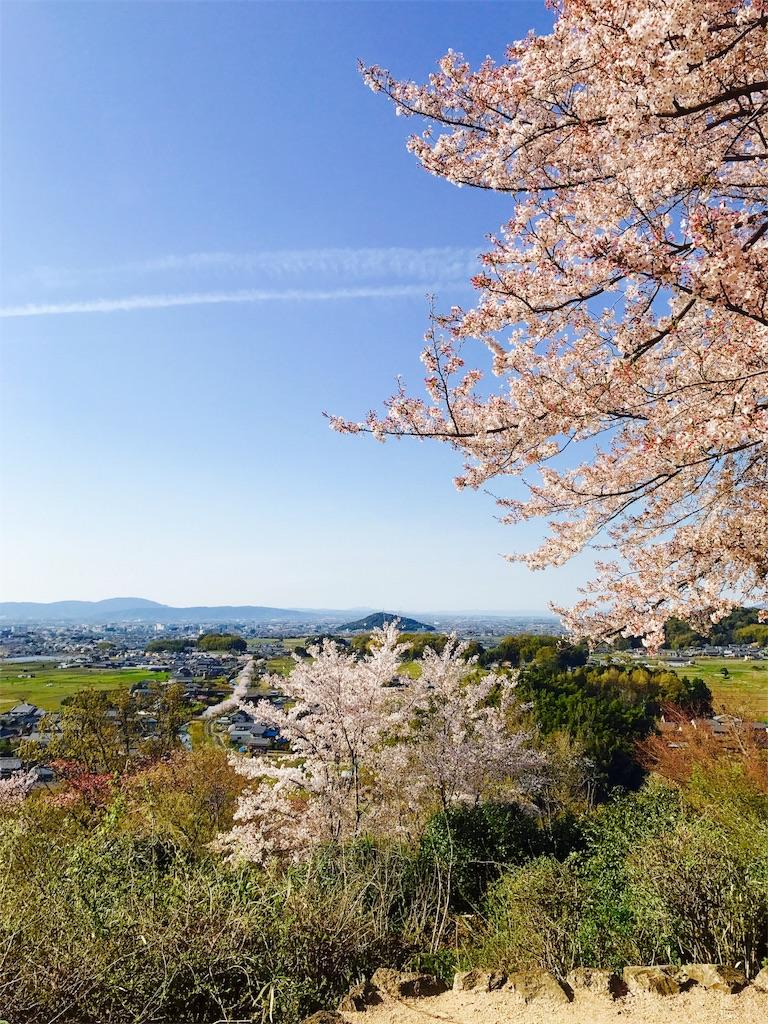 f:id:KazuyaHori:20190410084729j:image
