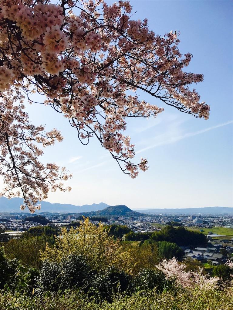 f:id:KazuyaHori:20190410084747j:image