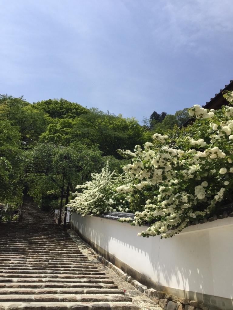 f:id:Kazuyasakurai:20180504104103j:plain