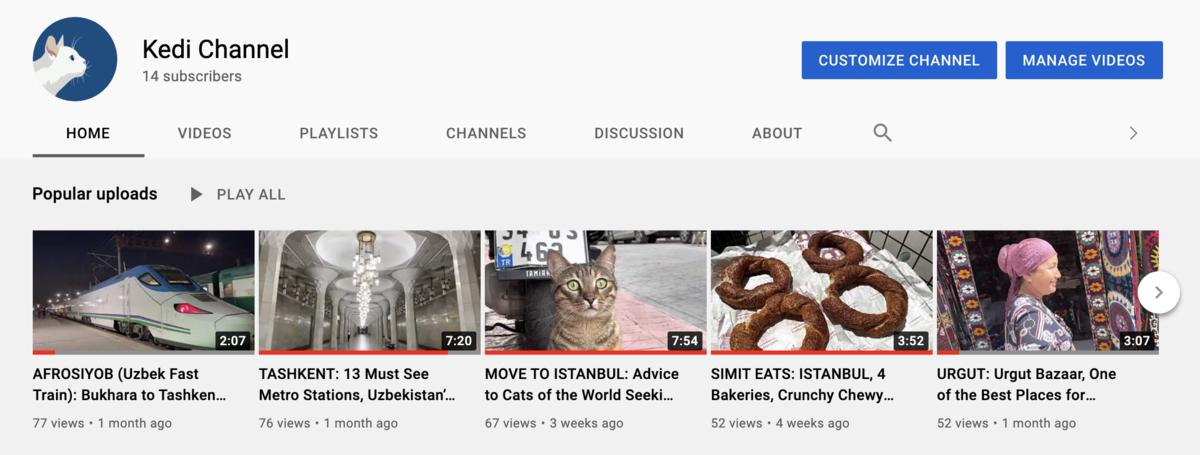 youtube-kedi-channel