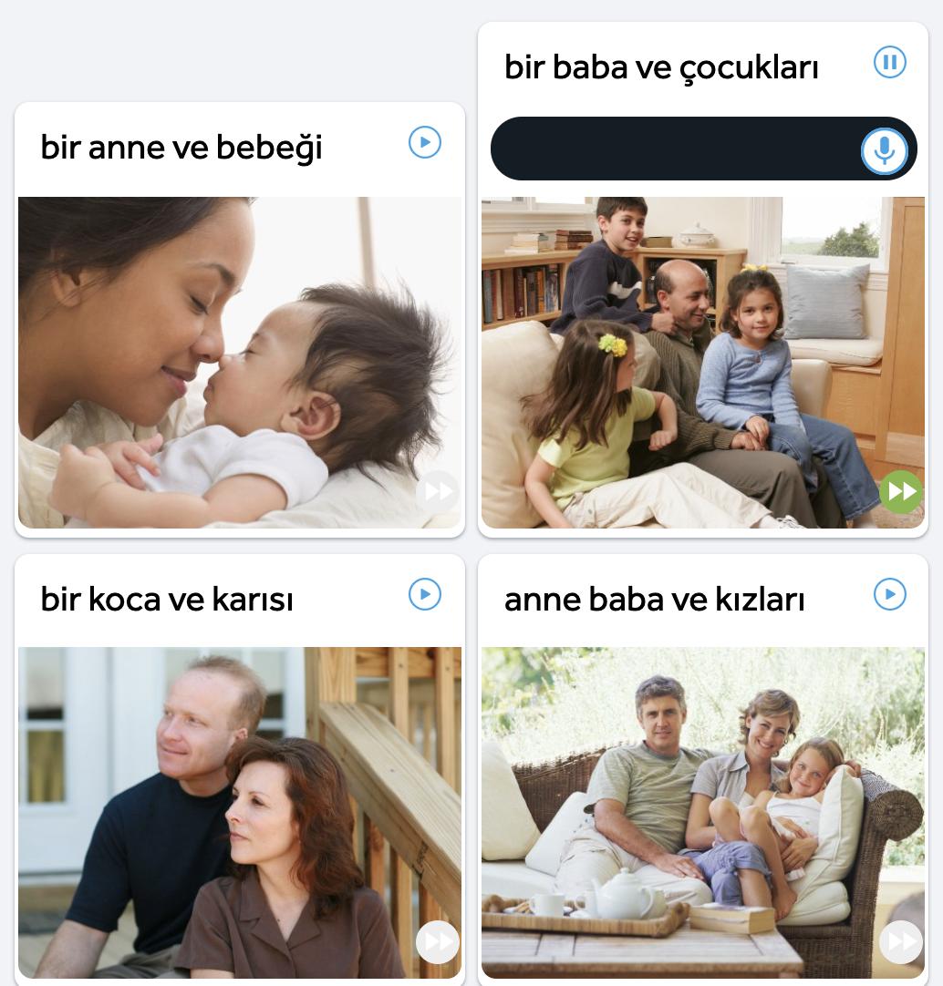 rosettastone-turkish
