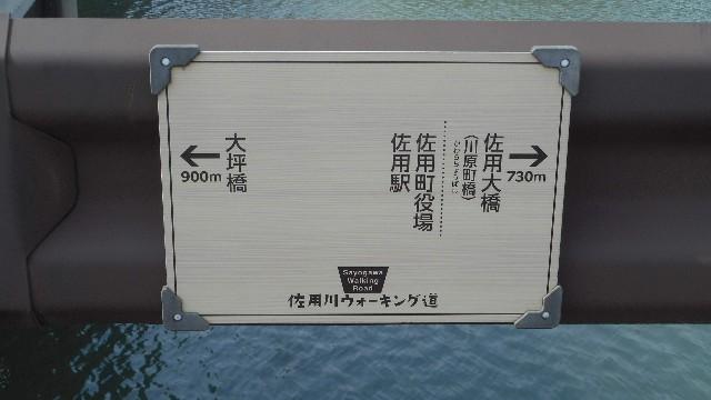 f:id:Keiryu-Goryo:20190308214118j:image