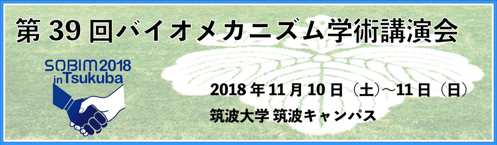 f:id:KeisukeIwama:20181102222308p:plain