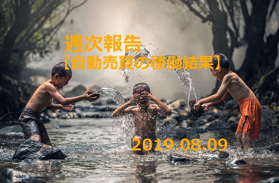 f:id:Kenshi128:20190811161926p:plain