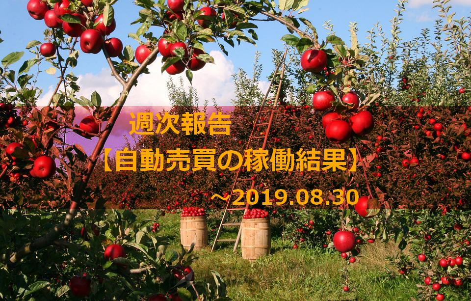f:id:Kenshi128:20190901142239p:plain