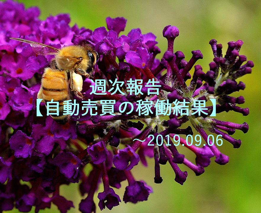 f:id:Kenshi128:20190909192057p:plain
