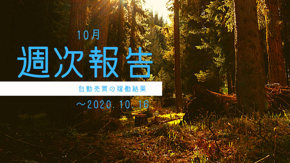 f:id:Kenshi128:20201019183036p:plain