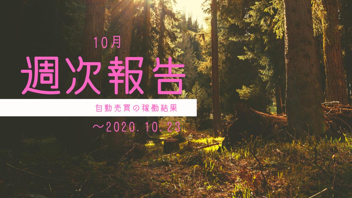 f:id:Kenshi128:20201103092524p:plain