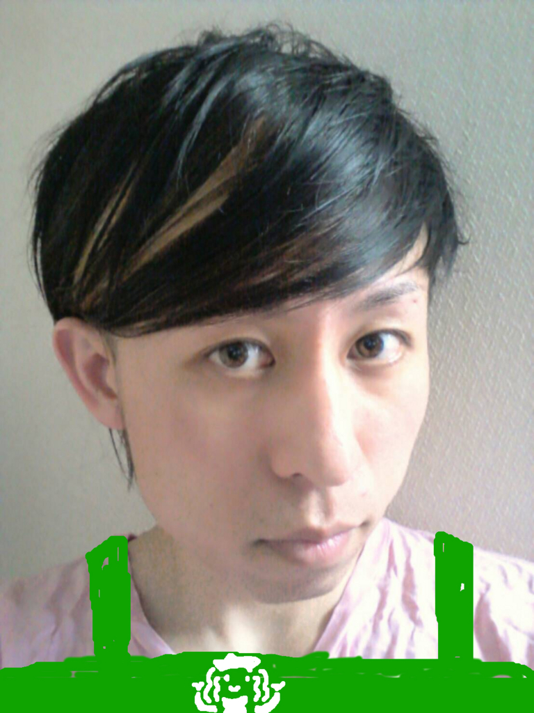 f:id:Kenta-Reptile:20160614172845j:plain