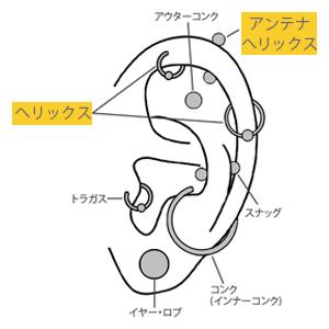 f:id:Kenta-Reptile:20160713204343p:plain