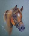 """「K.さんに捧げます。」、""""Horse portrait""""(パステル)"""