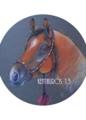 「栗毛の馬のポートレート」(パステル)