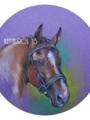 「友達の馬のポートレート」(パステル)