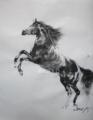 「立ち上がる黒馬」(和紙、墨)