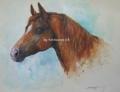 今日の絵:「アリスという名の馬」