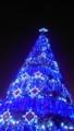 故郷のクリスマスツリー