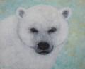 """""""A fluffy Polar Bear"""""""