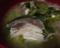 大好きなブリと菜の花と玉ねぎのアラ汁