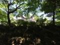 大好きな旧古河庭園で薔薇を撮影