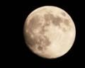 七夕の月🌔