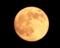 黄金に輝く今日の月🌔