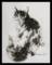 今日の墨絵。「振り向くママ猫」