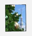 クリスマスが近い。。。