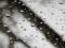 都内の初雪が雨に。。。