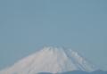 雪化粧が濃くなった富士山